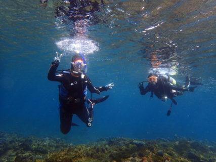 冬の体験ダイビングもおすすめです!